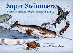 superswimmers